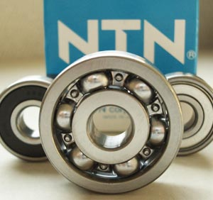 NTN SF4019VPX2 Bearings